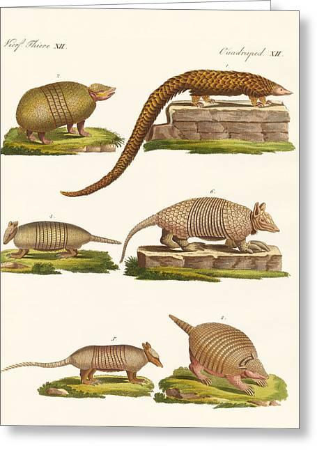 Armoured Animals Greeting Card by Splendid Art Prints