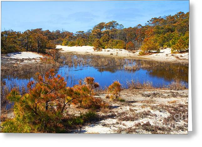 Around The Pond Greeting Card by Robert Pilkington