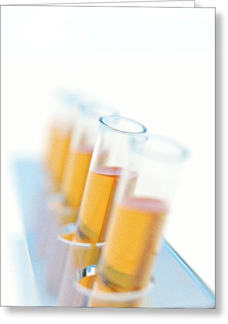 Array Of Test Tubes Greeting Card