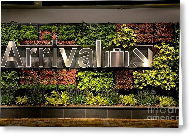 Arrival Sign Arrow And Flowers At Singapore Changi Airport Greeting Card
