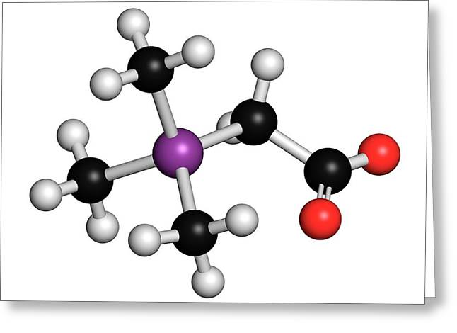Arsenobetaine Organoarsenic Molecule Greeting Card