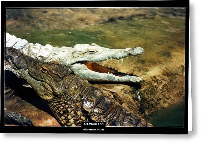 Art Work 158 Alligator Greeting Card by Alexander Drum