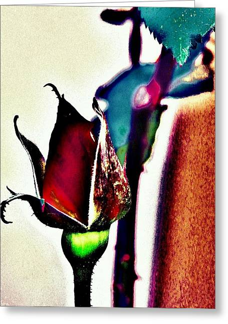 Greeting Card featuring the photograph Artful Bud by Faith Williams