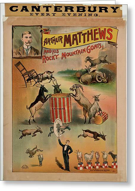 Arthur Matthews And His Rocky Mountain Go Greeting Card