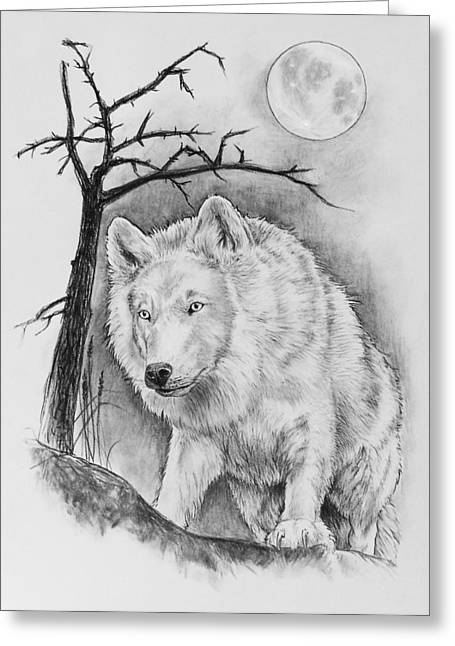 Artic Wolf Greeting Card