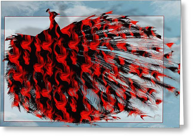 Artistic Red Peacock Greeting Card