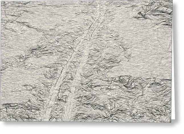 Artistic Ski Tracks In Snow Greeting Card