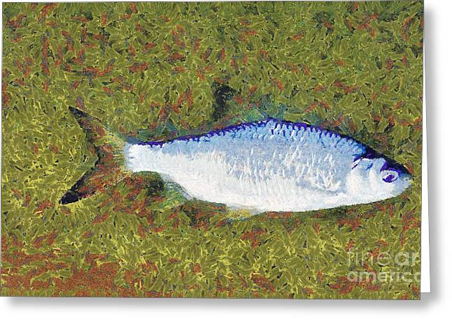 Artistically Painted Fish Greeting Card by Odon Czintos