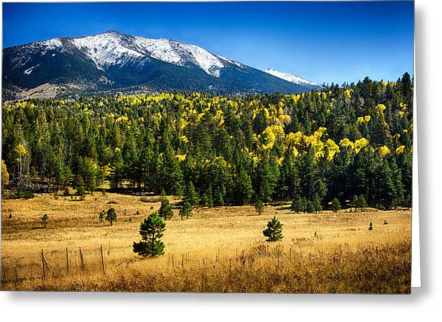 As Fall Arrives In Arizona  Greeting Card by Saija  Lehtonen