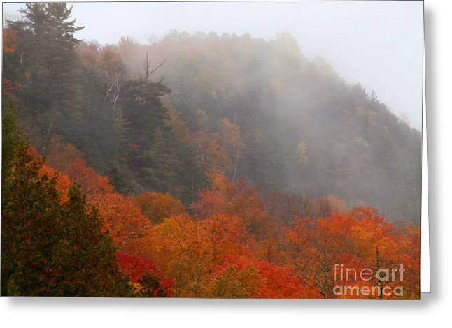 As The Fog Rolls In Greeting Card by Steven Valkenberg