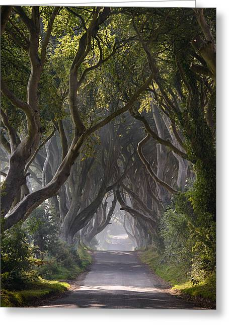 As The Mist Clears Greeting Card by Andy Gibson
