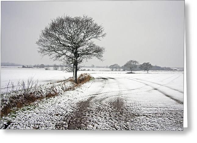 As Winter Bites. Greeting Card