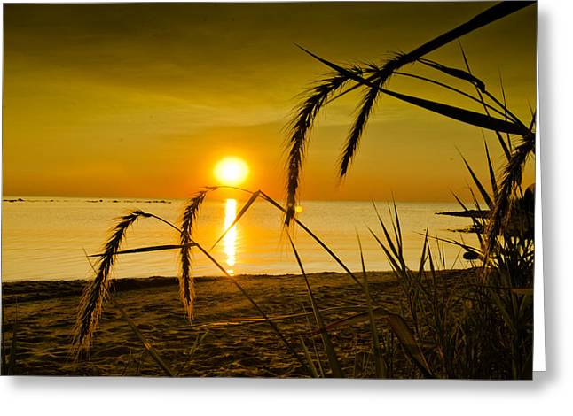 Ascend Greeting Card by Jason Naudi Photography