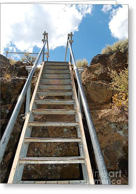 Greeting Card featuring the photograph Ascending by Debra Thompson
