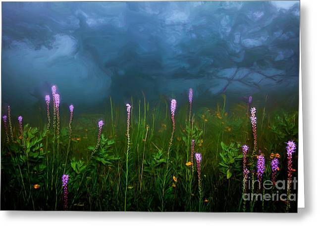 Ascension II - Blue Ridge Parkway Greeting Card by Dan Carmichael
