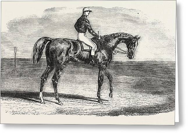 Ascot Races Woolwich, The Winner Of The Emperors Vase Greeting Card
