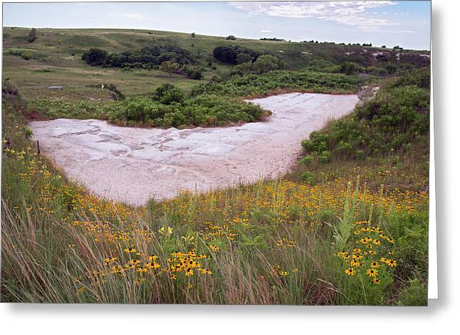 Ashfall Fossil Beds Greeting Card by Jim West