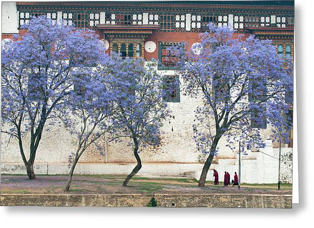Asia, Bhutan Monks Walking By Jacaranda Greeting Card