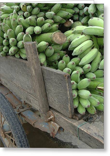 Asia, Vietnam Green Bananas On An Old Greeting Card by Kevin Oke