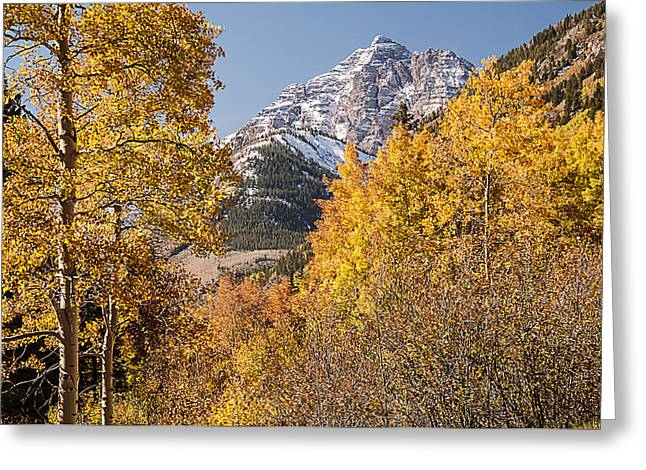 Aspen And Mountains 5 Greeting Card
