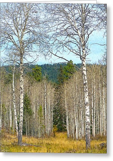 Aspen Grove Digital Oil Painting Greeting Card