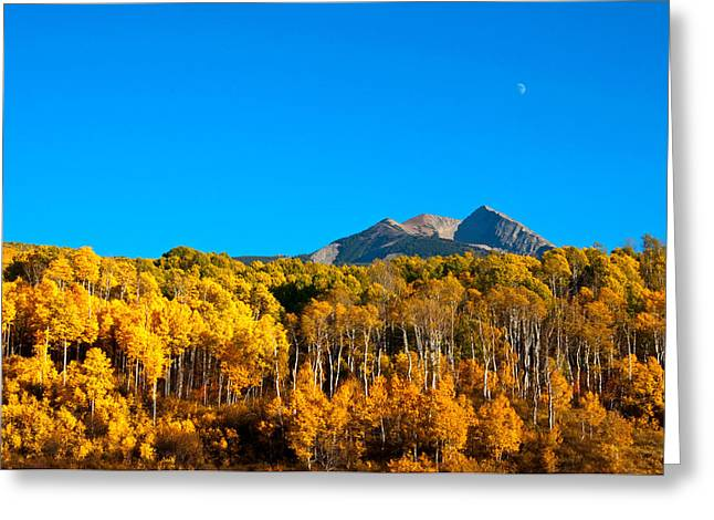 Greeting Card featuring the photograph Aspen Moon by Eric Rundle