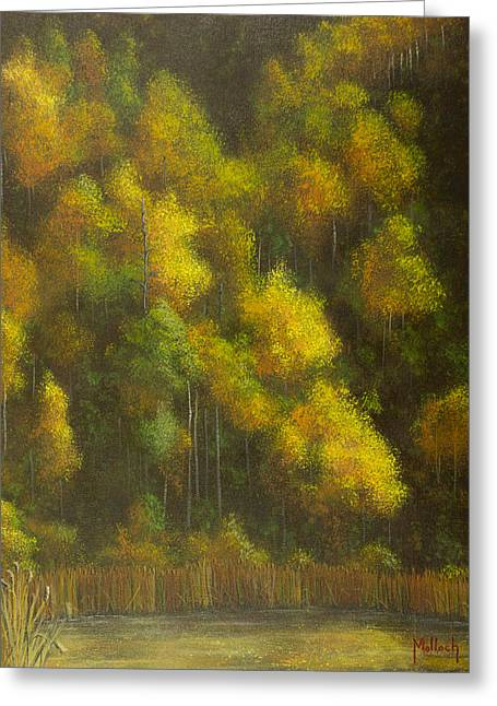 Aspens And Cattails Greeting Card by Jack Malloch