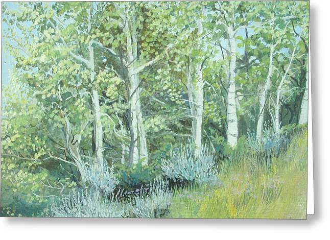 Aspens Of Medicine Bow Greeting Card by Terri Ana Stokes