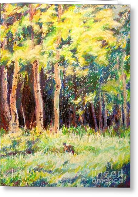 Aspens On The North Rim Greeting Card by Katrina West
