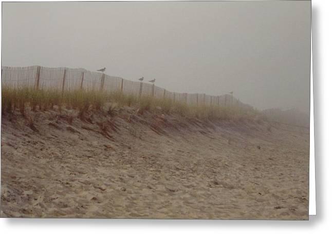 Assateague Dunes Greeting Card by Joann Renner