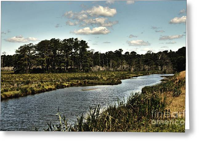 Assateague Island - A Nature Preserve Greeting Card by Gerlinde Keating - Galleria GK Keating Associates Inc