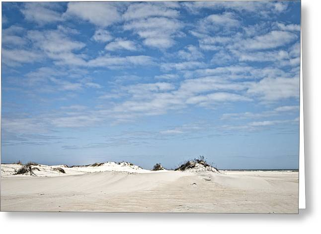 Assateague National Park Dunes Greeting Card