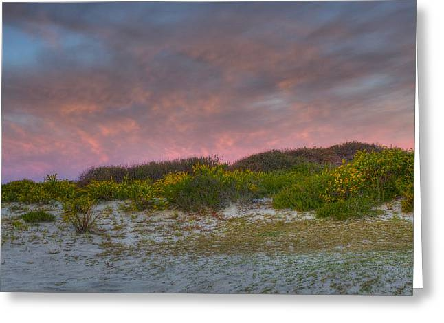 Asseteague Island Dune Sunrise Greeting Card