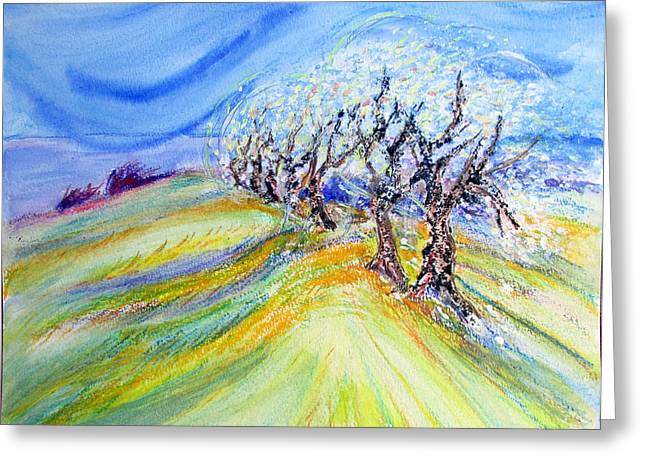 Assisi Wind Greeting Card by Sarah Hornsby