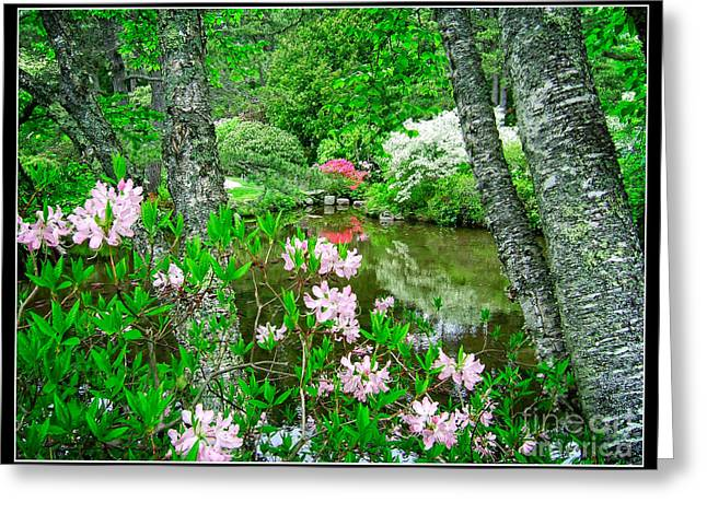 Asticou Azalea Garden Greeting Card by Edward Fielding