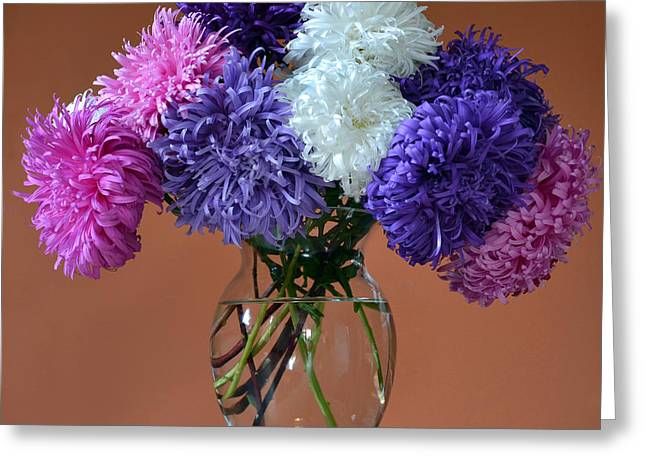 Astonishing Asters. Greeting Card by Terence Davis