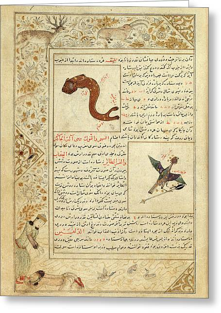 Astrological Symbols Greeting Card by British Library
