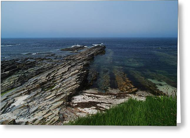 At Birsay Greeting Card by Steve Watson