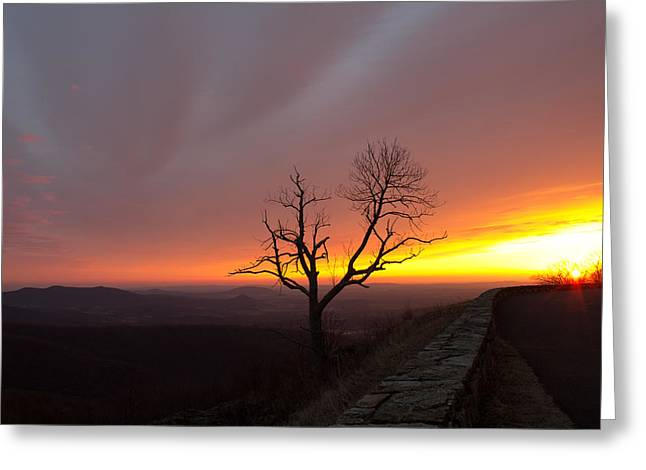 At First Light Greeting Card by Everett Houser