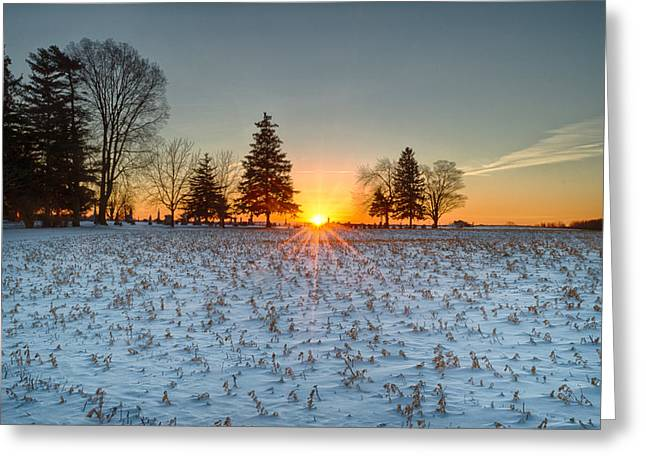 Greeting Card featuring the photograph At First Light by Garvin Hunter