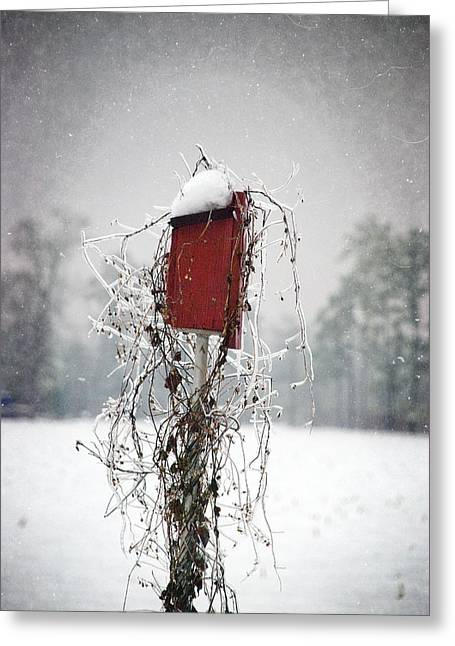 At Home In The Snow Greeting Card