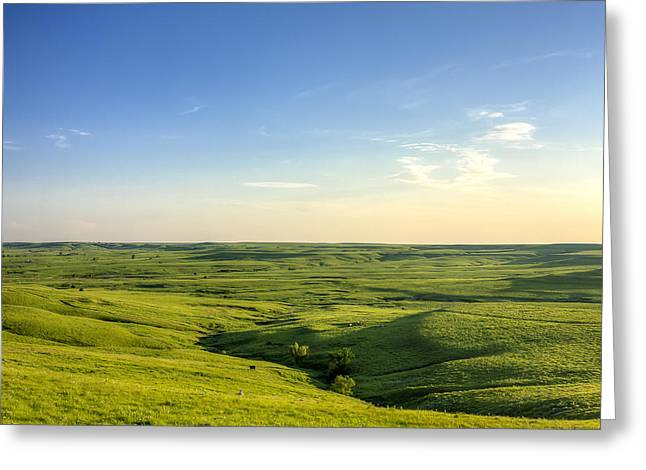 Greeting Card featuring the photograph At Peace  by Scott Bean