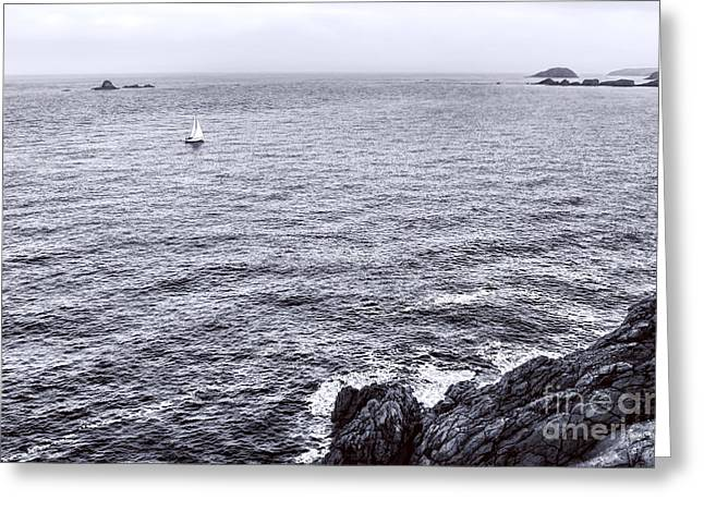 At Sea Greeting Card by Olivier Le Queinec