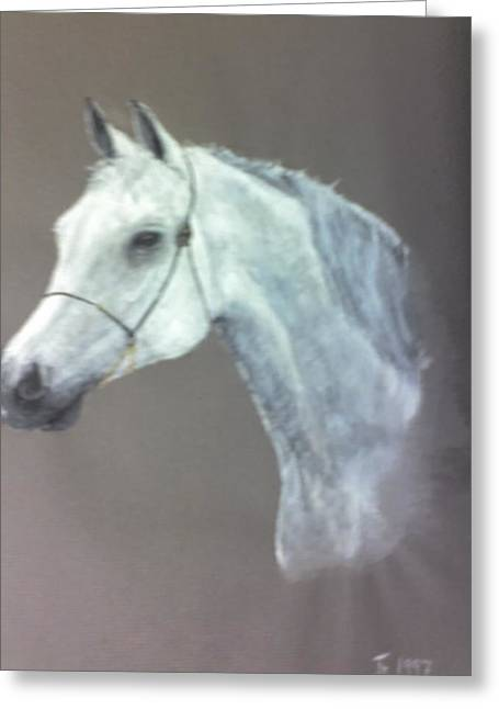 At Stud Greeting Card by Stephen Thomson