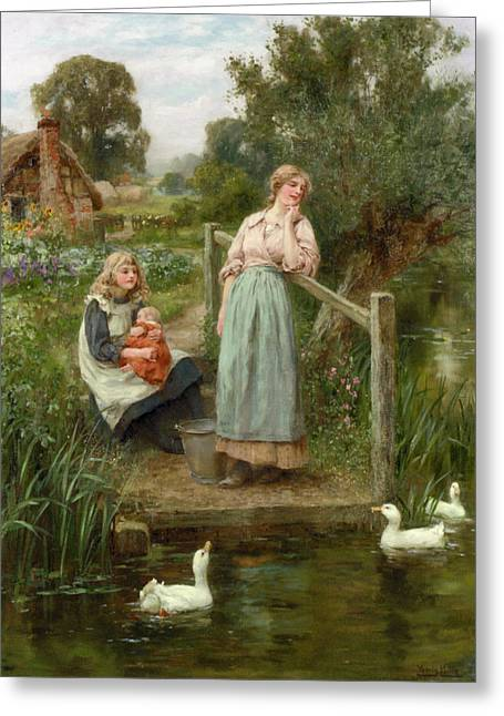 At The Duck Pond Greeting Card by Henry King