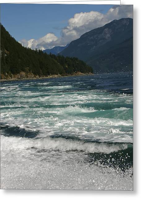 Greeting Card featuring the photograph At The Edge by Rhonda McDougall