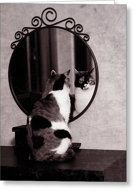 At The Mirror Greeting Card by Laura Melis