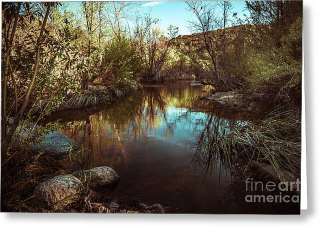 At The River Greeting Card by Alexander Kunz
