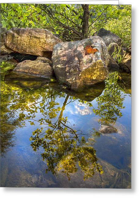 Greeting Card featuring the photograph At The River by Debra and Dave Vanderlaan