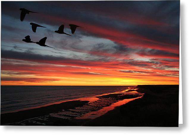 Atardeceres Greeting Card